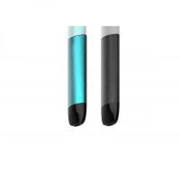 for USA Market Disposable Ecig Rincoe Neso S10 Nicotine Free E Cigarettes